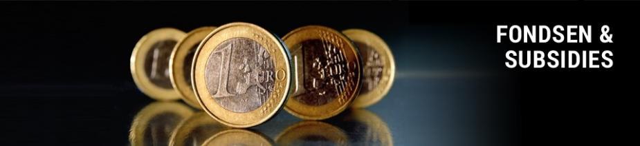 Financiele regelingen / fondsen en subsidies